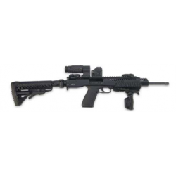 ARSENAL FIREARMS - LRC-2EFS...